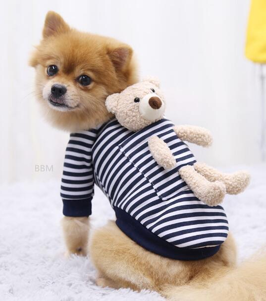 2021★秋冬新作★超人気★ペット服★犬服彡★猫犬用品★3色XS-XXL