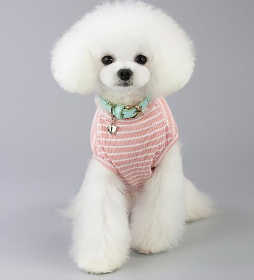 2021★春夏新作★超人気★ペット服★犬服彡★猫犬用品★5色S-XXL