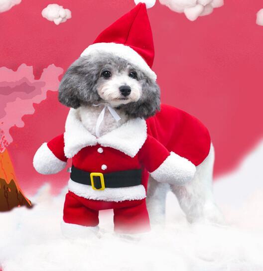 2020年新作★素敵なペット服★可愛い犬服★サンタさん★クリスマス★帽子付き★愛犬大変身★XS-XL